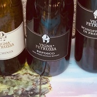Vigna Petrussa Winery Offers Up Big and Bold Flavors in Italian Wines